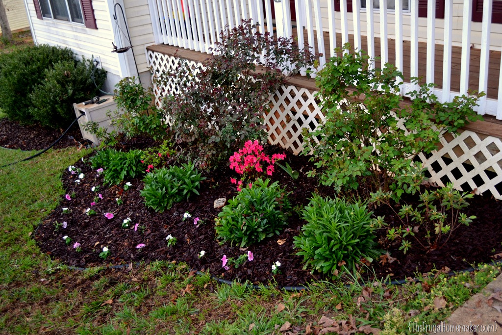 cleaning out the flower beds {sprucing up the outdoors for spring, Beautiful flower