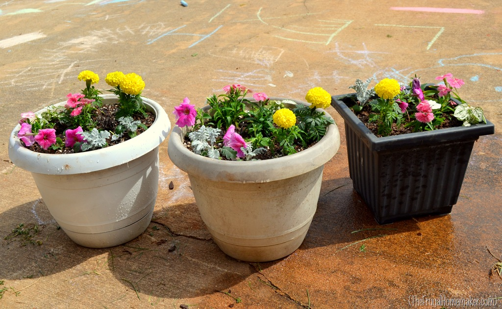 Large Flower Pots Lowes: Color-filled Flower Pots {Sprucing Up The Outdoors For