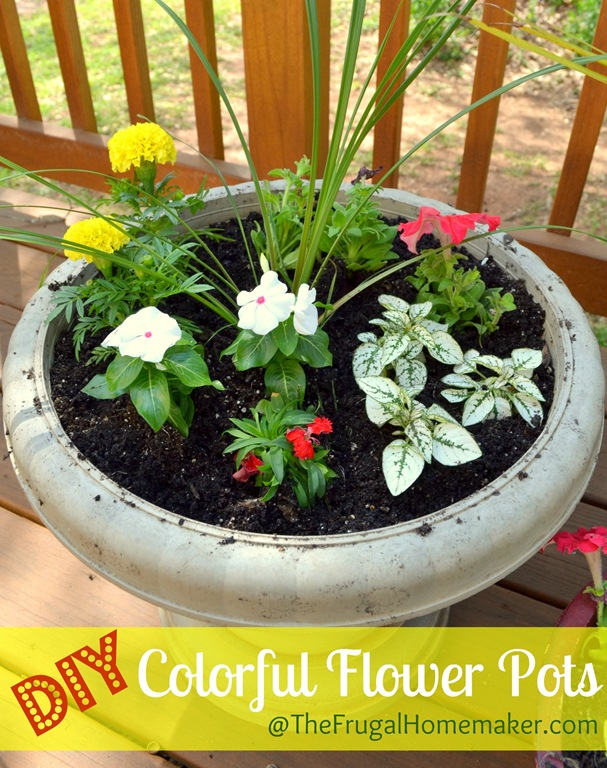 Color filled flower pots sprucing up the outdoors for for Planting flowers in pots ideas
