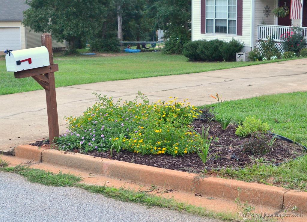 Mailbox flower garden for Cj garden designs