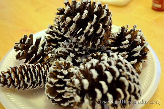 snow covered pinecones with Epsom salt