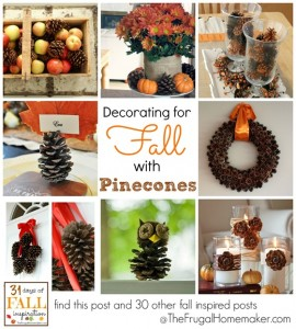 Decorating-for-fall-with-pinecones.jpg
