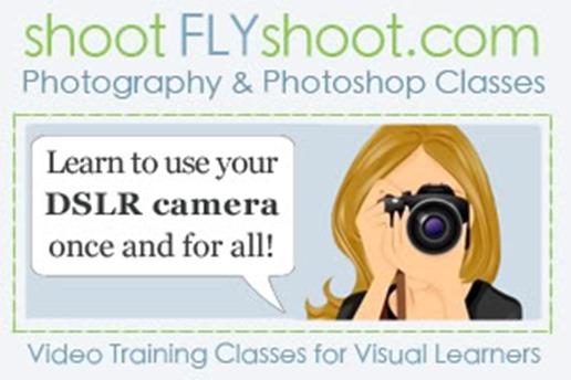 Shoot_Fly_Shoot_Badge_200x300