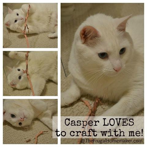Casper helping me craft