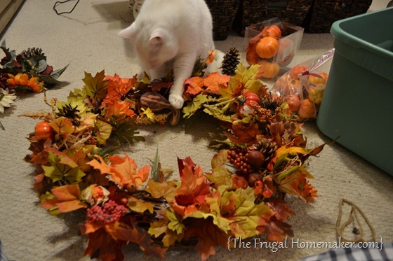 white cat helping with my Fall wreath