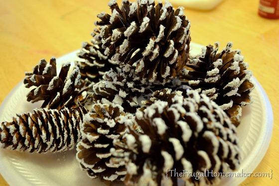 snow covered pinecones with Epsom salt