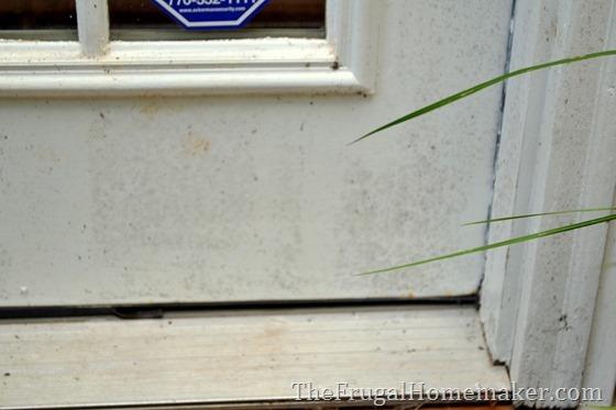 cleaning off mildew off back door