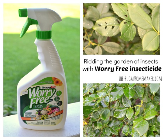 Rid your garden of pesky insects with Worry Free insecticide (win a $25 gift card)