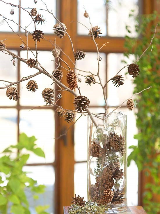 pinecones in vase on stick