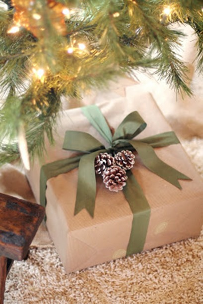pinecones on present