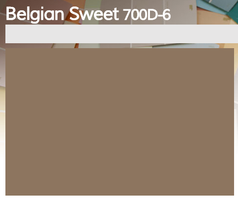 belgian sweet