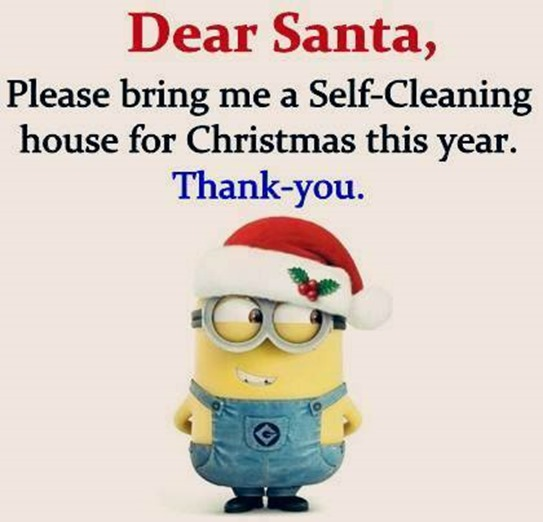 Dear Santa, I want a self-cleaning house for Christmas