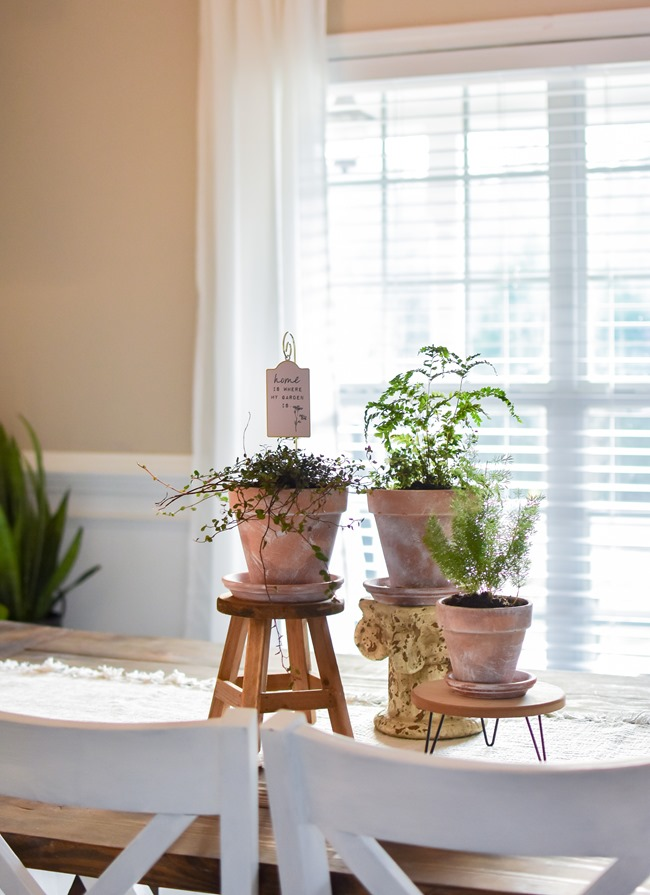How to age Terra Cotta pots plus a simple spring centerpiece-3