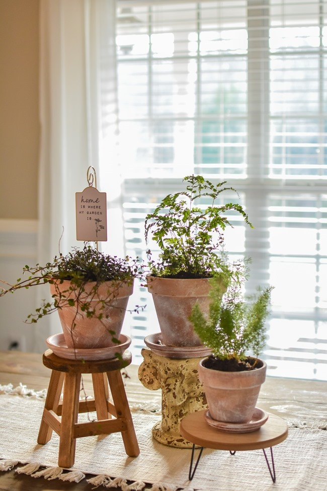 How to age Terra Cotta pots plus a simple spring centerpiece-4
