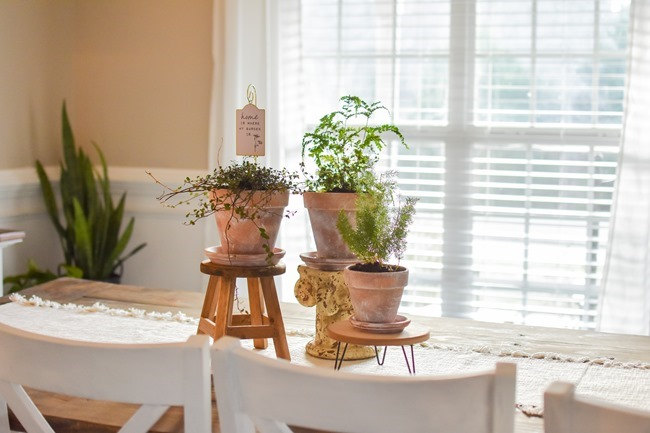 How to age Terra Cotta pots plus a simple spring centerpiece-5