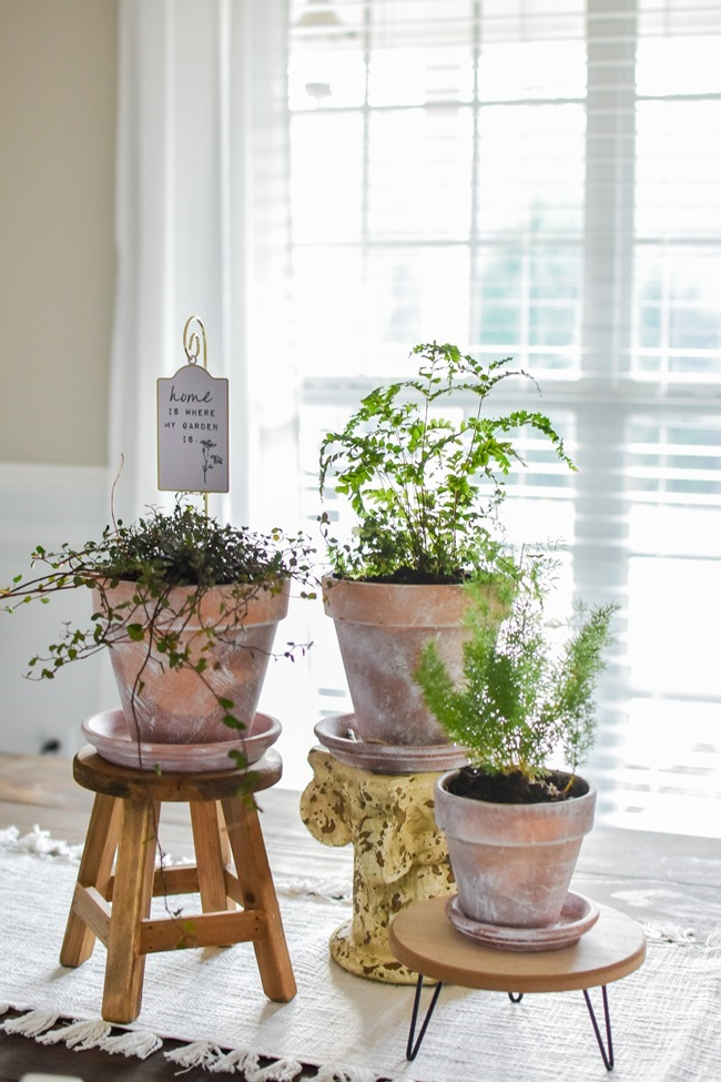 How to age Terra Cotta pots plus a simple spring centerpiece-9