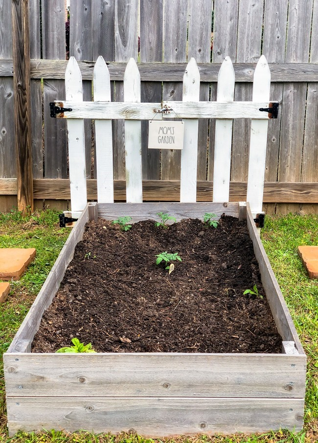 DIY Raised Garden Beds made with cedar fence pickets-10