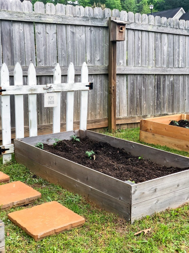DIY Raised Garden Beds made with cedar fence pickets-15