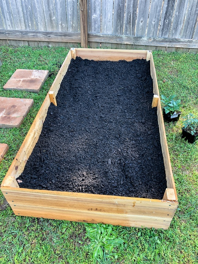 DIY Raised Garden Beds made with cedar fence pickets-6