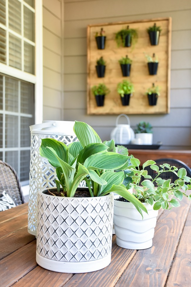 Spring Back Patio Refresh-8