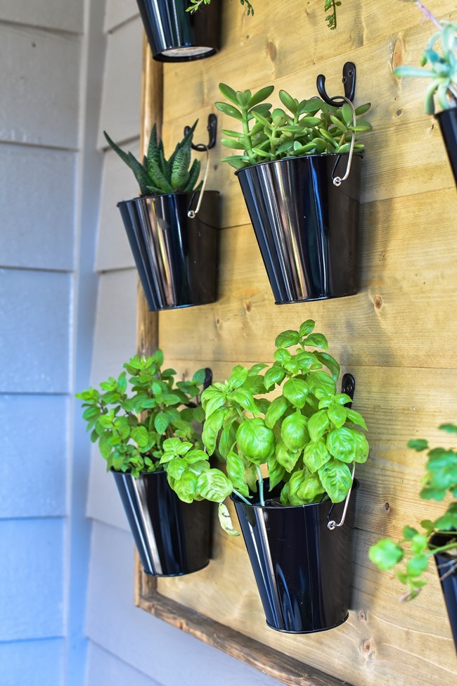 DIY Hanging Plant Wall-37