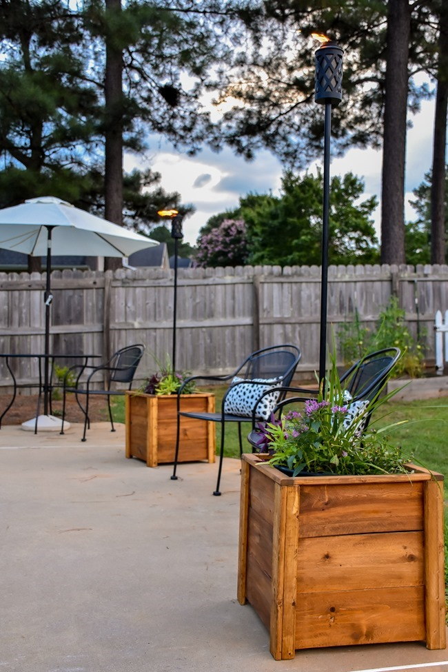 DIY Cedar Wood Planters-5