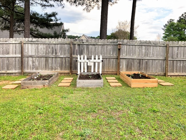 DIY Raised Garden Beds made with cedar fence pickets-8