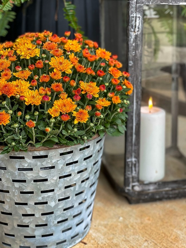 Cozy Fall Front Porch-16
